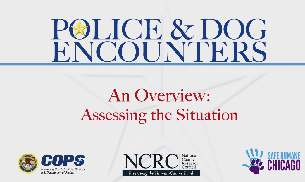 Police & Dog Encounters: Tactical Strategies and Effective Tools to Keep Our Communities Safe and Humane