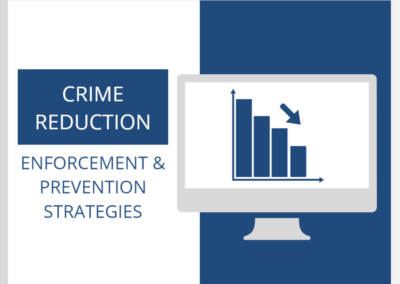 Crime Reduction: Enforcement and Prevention Strategies